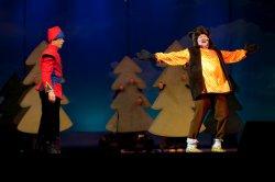 Новогодний подарок!  Премьера - музыкальная сказка « Пойди туда - не знаю, куда» (Е. Шашин)
